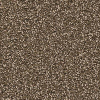 carpet6